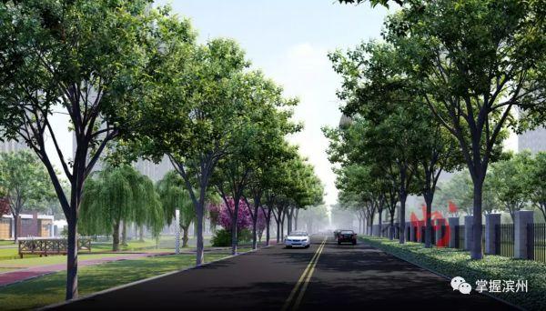 开通黄河九路+建湿地公园!滨州市区又将启动新工程