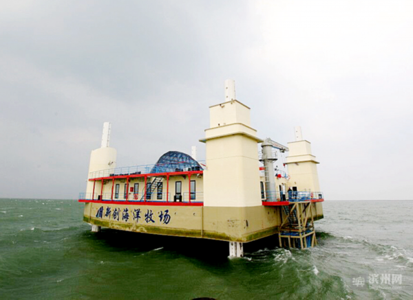 滨州市现代化海洋牧场建设完成三期工程