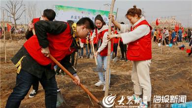 20志愿者们合力种下树苗,为滨州添新绿_副本.jpg