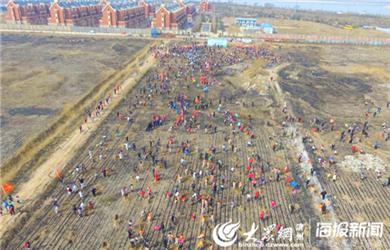 250众多网友一起植树,场面甚是壮观_副本.jpg