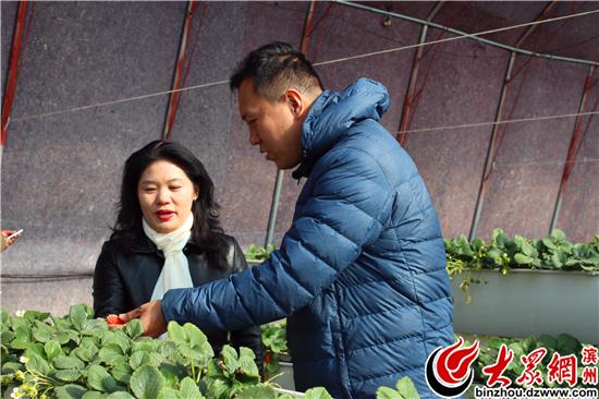 刘连成向记者介绍草莓种植情况.jpg